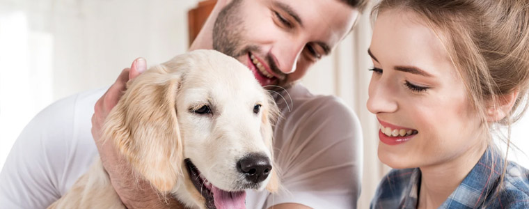 perro y salud cardiaca