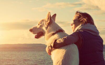 ¿Es bueno para la salud tener perro?