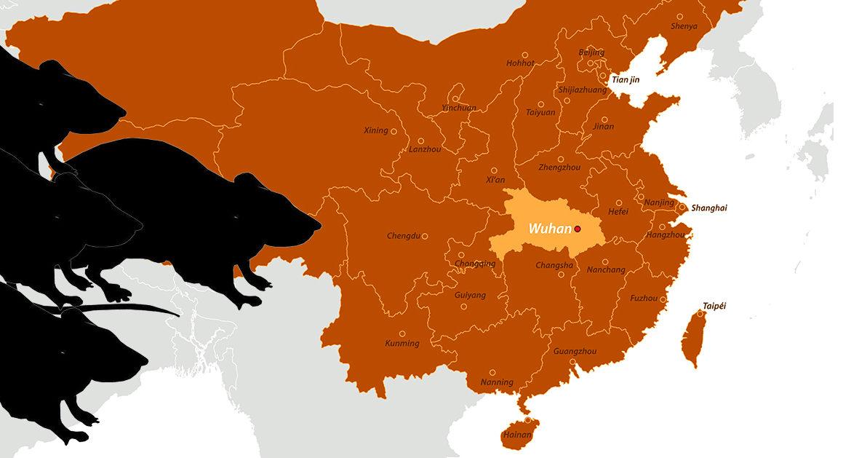 El nuevo virus de China: La cuarta persona muere al confirmarse la transferencia de humano a humano