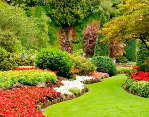 Diseño de jardines profesional ¿en qué consiste?